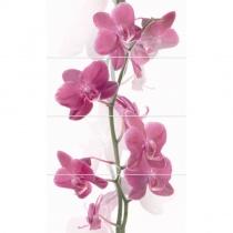 CERROL Porto Orchis Komplet Centro - Декоративная плитка настенная, цветы, 25х60 см 507350
